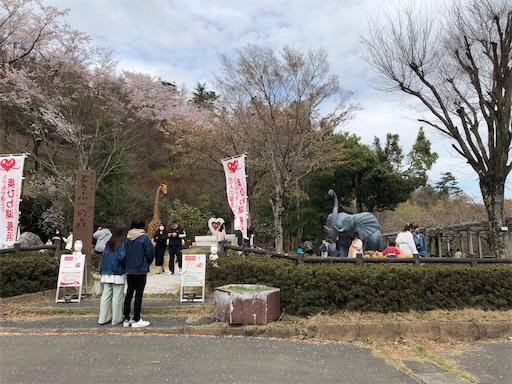 f:id:yukinekokei:20210404153148j:image
