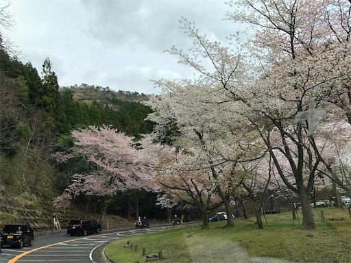 f:id:yukinekokei:20210405003153j:image