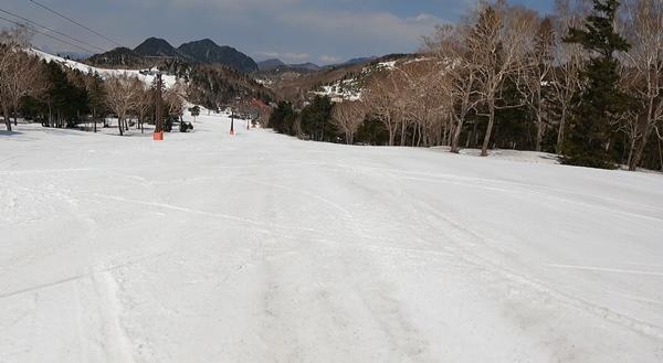 f:id:yukinekokei:20210409232124j:plain