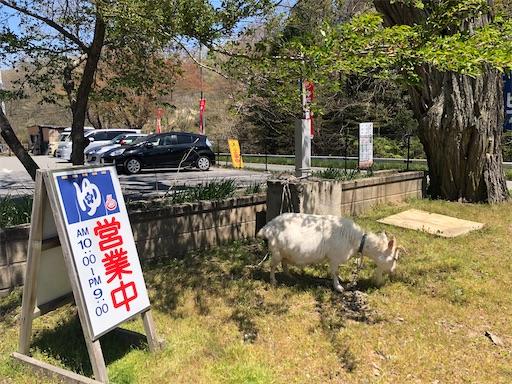 f:id:yukinekokei:20210428150433j:image