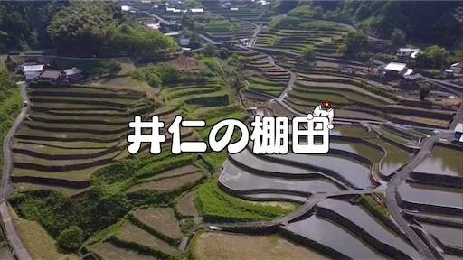 f:id:yukinekokei:20210527113241j:image