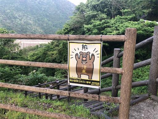 f:id:yukinekokei:20210603203521j:image