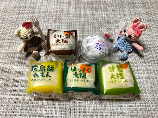 f:id:yukinekokei:20210606125528j:image
