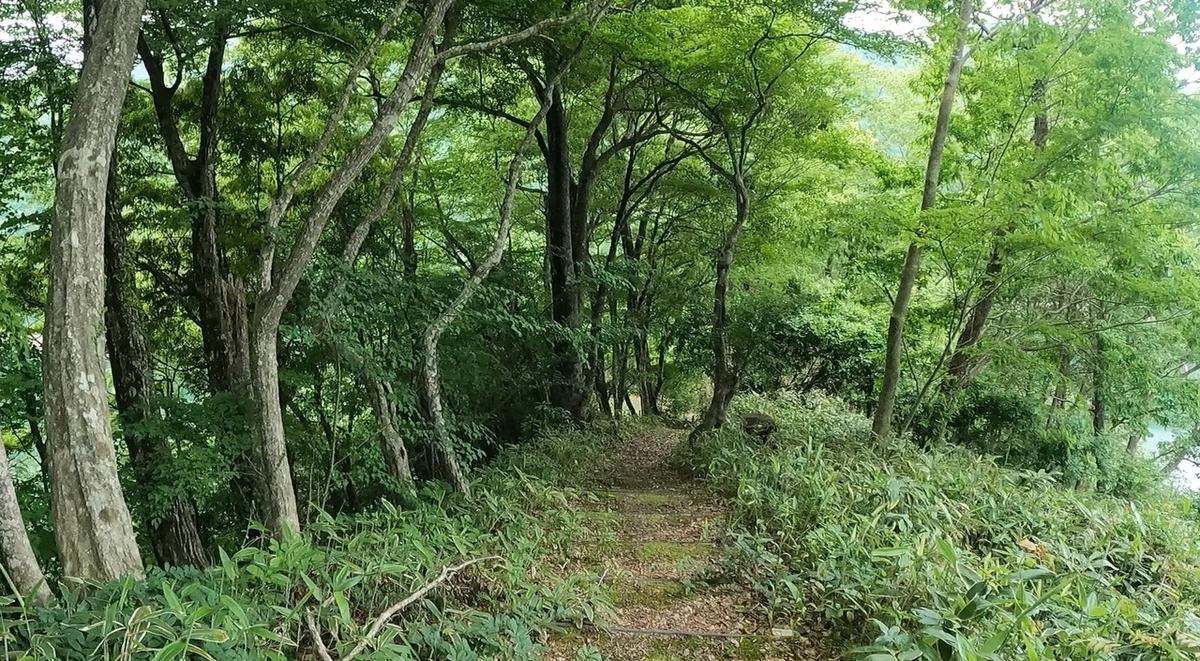f:id:yukinekokei:20210610204025j:plain