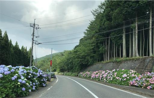 f:id:yukinekokei:20210627054824j:image
