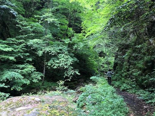 f:id:yukinekokei:20210627073805j:image