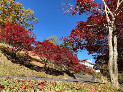 f:id:yukinekokei:20210627085736j:image