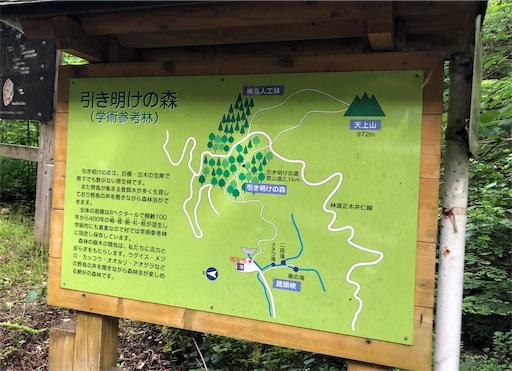 f:id:yukinekokei:20210630134056j:image