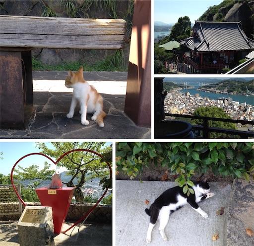 f:id:yukinekokei:20210707225502j:image