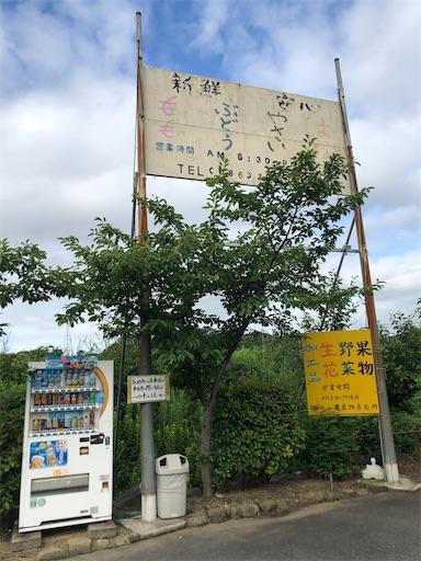 f:id:yukinekokei:20210718123537j:image