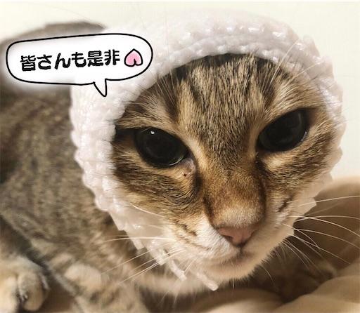 f:id:yukinekokei:20210721090819j:image
