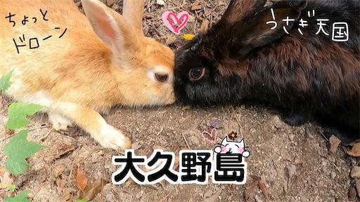 f:id:yukinekokei:20211001140052j:image