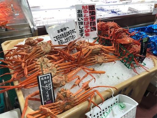 f:id:yukinekokei:20211002231724j:image