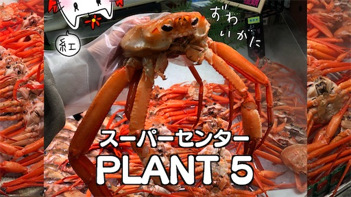 f:id:yukinekokei:20211003225626j:image