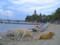アドリア海沿岸の島の砂浜と犬2匹