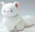 [猫][アイコン]リリーちゃん