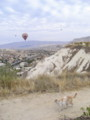 [トルコ][風景写真][猫]ギョレメにて、気球と猫