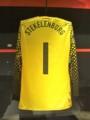 [フットボール][オランダ]2010年のワールドカップでステケレンブルフが着ていたキーパーシャツ