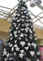 [静止物]クリスマスツリー