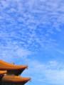 [台湾][風景写真]國家戲劇院と飛行機雲