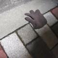 [落とし物]両手用の手袋