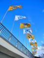 [風景写真][フットボール]高校サッカー選手権の旗