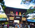 [風景写真]新春の明治神宮の南神門
