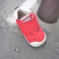 [落とし物]子供の右足用の靴