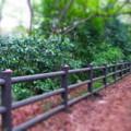 [風景写真]公園の柵