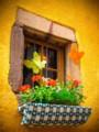 [フランス][風景写真]リクヴィルの民家の窓