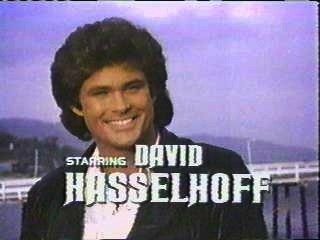 デビッド・ハッセルホフの画像 p1_1