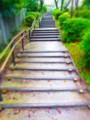 [風景写真]階段