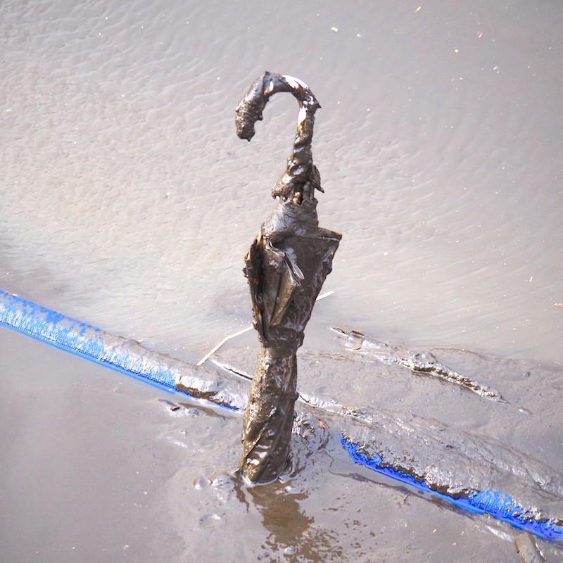 井の頭池の底に捨てられていたもの