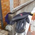 [落とし物]両手用の手袋と一組の手袋