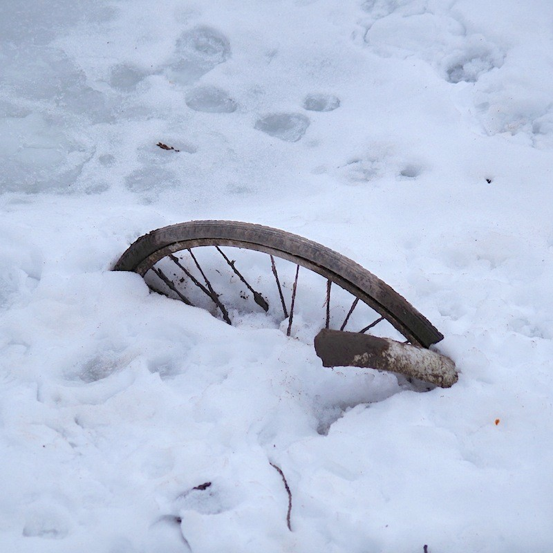 捨てられた自転車