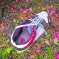 [落とし物]靴
