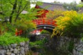 [風景写真]下鴨神社(賀茂御祖神社)