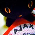 [フットボール]アヤックスのマフラーと猫さん