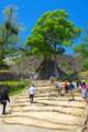 [風景写真]彦根城の石段