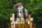 鹿島神宮の大鳥居竣工祭で登場した山車