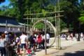 [風景写真]鹿島神宮の芽の輪くぐり