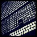 [風景写真]京都駅の鉄骨