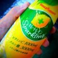 [食べ物]キレートレモン スパークリング