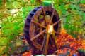 [風景写真]石山寺の水車