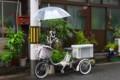 [風景写真]さすべえが付いた自転車