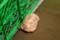 天王寺動物園のヒョウモンガメ