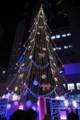 [風景写真]ドイツクリスマスマーケット大阪2014のクリスマスツリー