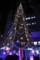 ドイツクリスマスマーケット大阪2014のクリスマスツリー