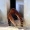 レッサーパンダの尻尾