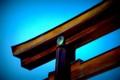 [風景写真]明治神宮の鳥居